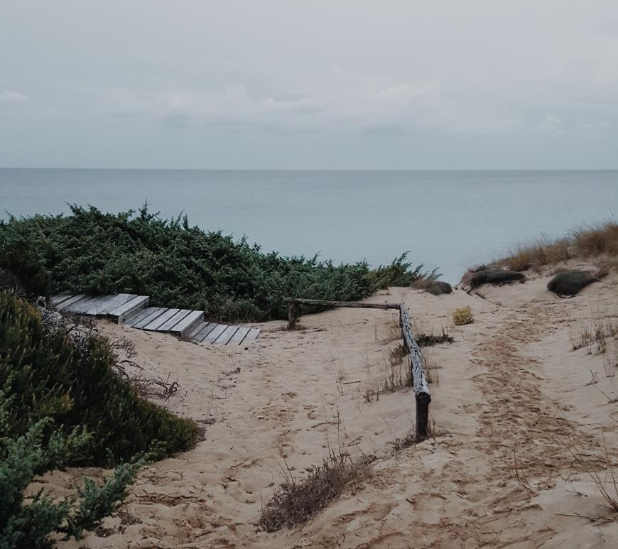 Dune di Campomarino